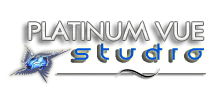 Platinum Vue Studio, Website Design and Development, Dallas, Texas
