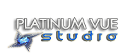 Platinum Vue Studio Design and Development, Dallas, Texas