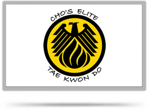 Cho's Elite Taekwondo, Orange, Connecticut