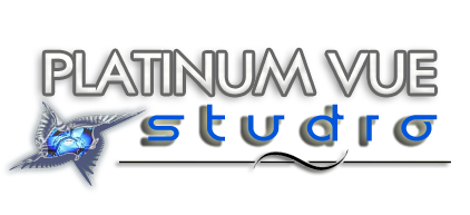 Platinum Vue Studio Retina Logo